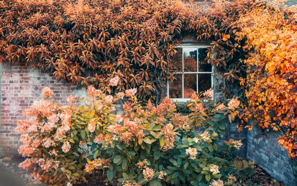 longère avec feuilles d'automne